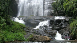 COORG  (2)