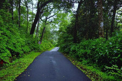 COORG  (8)