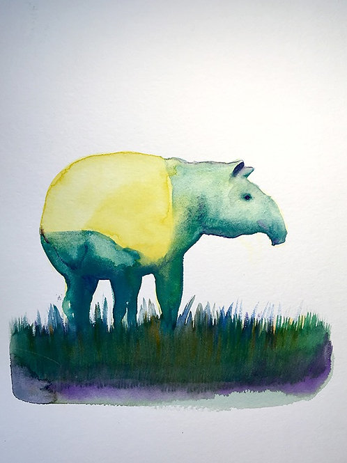 Le tapir jaune