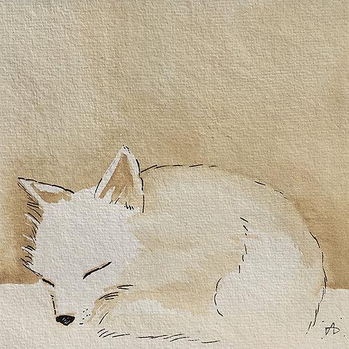 Renardeau endormi