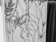 singe araignee