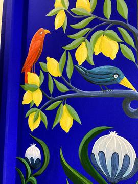 oiseau rouge et bleu