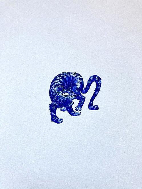Petit tigre bleu