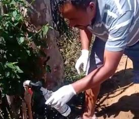 Planaltino: água distribuída não é adequada para consumo humano; população se revolta