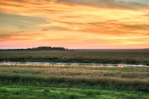 Prairies At Sunrise