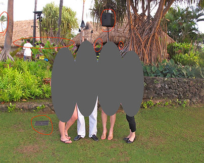Family 4 Hawaii promo image before.jpeg
