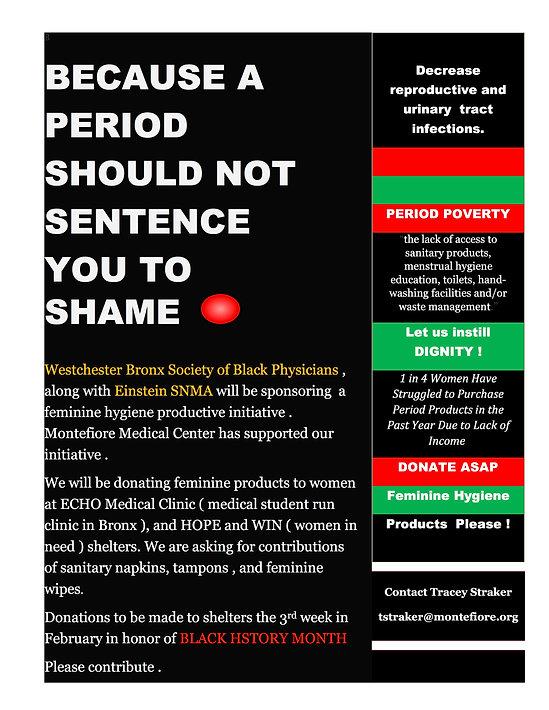 Feminine Hygiene Product Flyer (1) (1).j