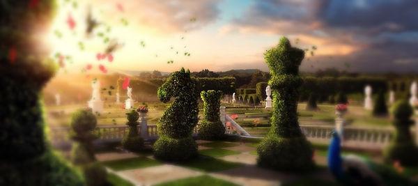 Magic Chess World cropped_edited.jpg