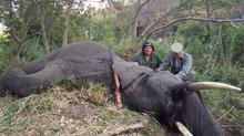 Tinie's First Safari of the Season - Hwange Communal Area