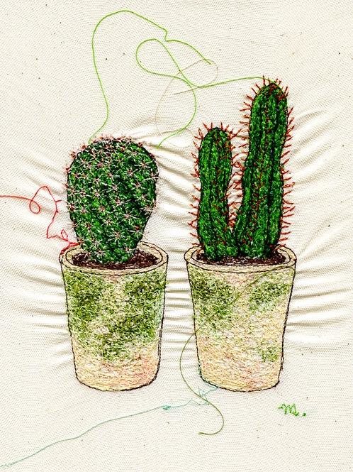 6x8 Cactus