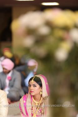 WEDDING DAY  (746)