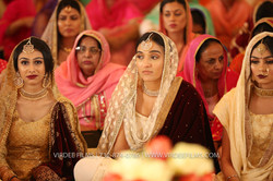WEDDING  (730)