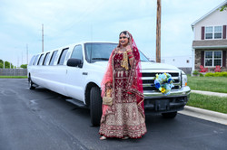 LOVE WEDDING  (291)
