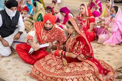 WEDDING (625)