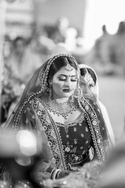 LOVE WEDDING  (674)