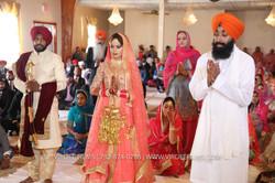 WEDDING  (690)