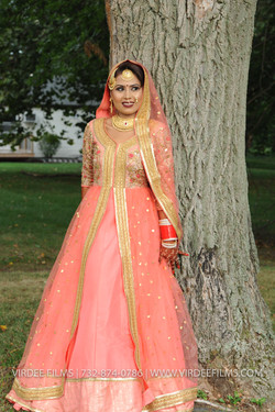 WEDDING  (220)