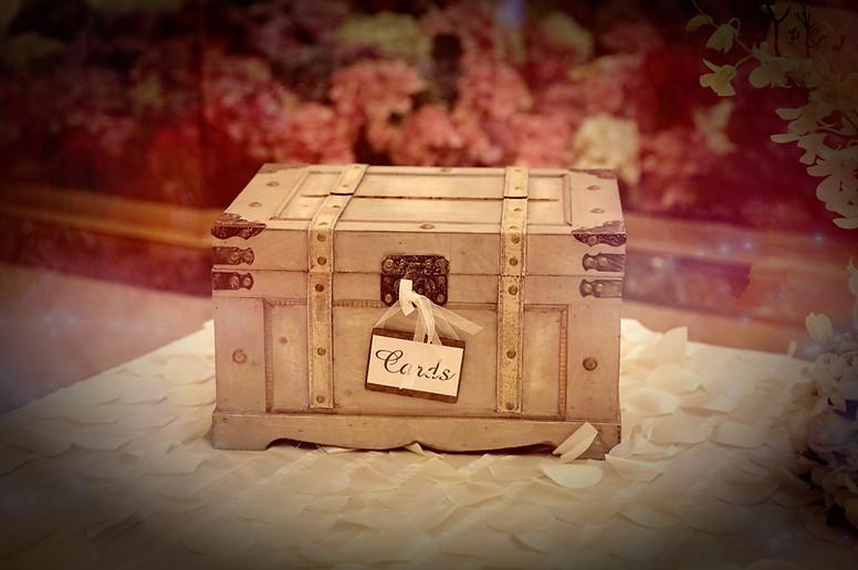 Wedding Photographer-Virdee Films  (25).