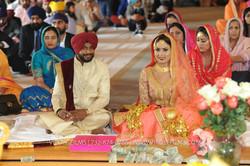 WEDDING  (805)