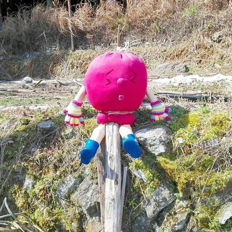 春の神山イベント情報