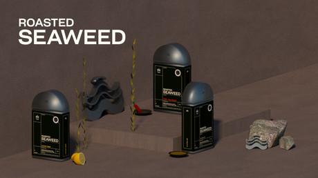 BRANDING - (Personal Work) Roasted Seaweed