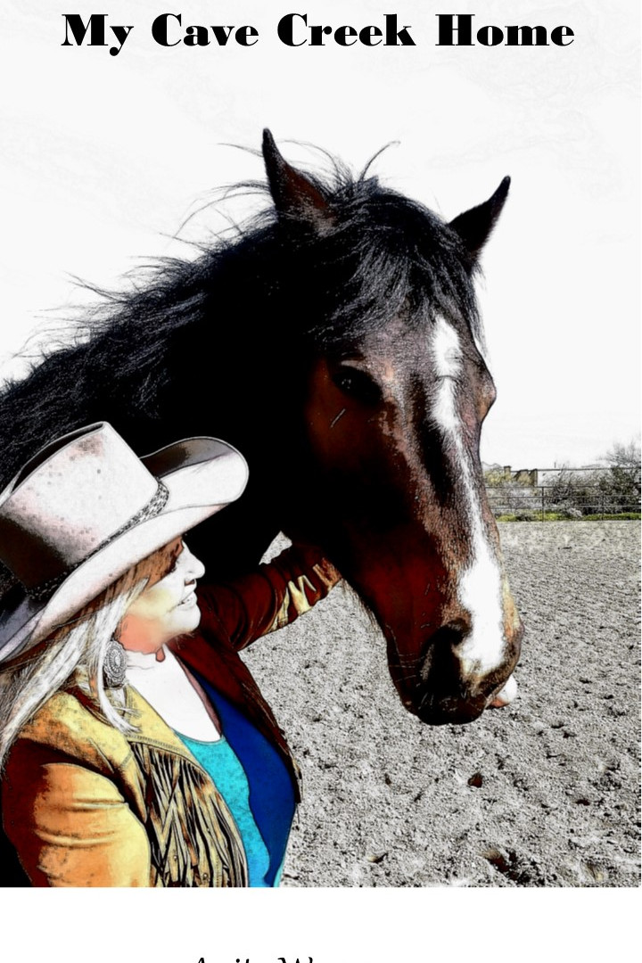 Anita Cropped Horse with Text.jpg