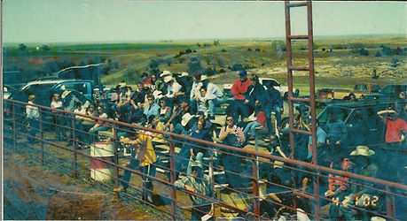 rodeo crowd.jpg
