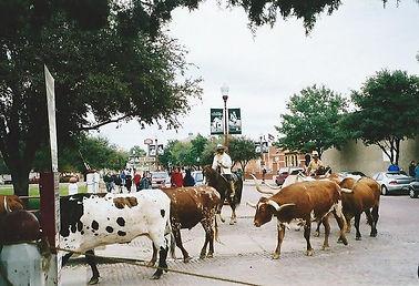 Fort Worth Longhorns.jpg