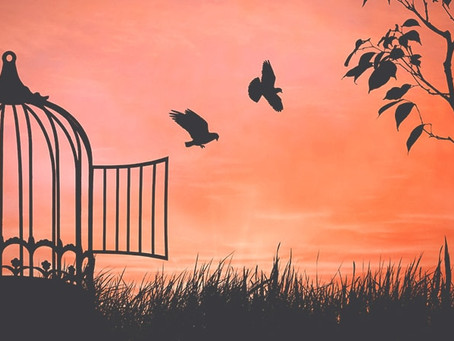 SOME BIRDS ARE NOT MEANT TO BE CAGED