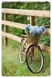 βασικοί κανόνες για την ποδηλατική εκπαίδευση του παιδιού