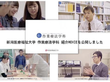 学科オリジナルサイトのリニューアルと新任教員の紹介!