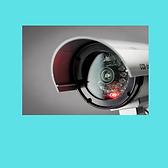 CCTV CAMERAS 3.png