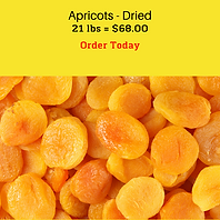 Nuts Apricots.png