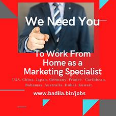 Badila Jobs Marketing  3.png