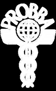 Probba_logo_white_transparent.png