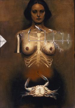 Anatomy of a Goddess