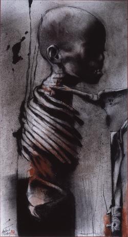 Human rib II
