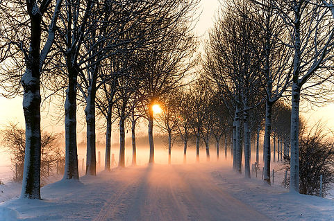 800px-Misty_winter_afternoon_(5277611659