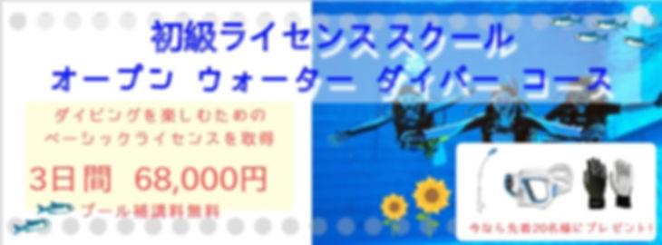 初級ライセンス.jpg
