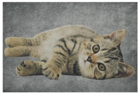 Deurmat kat