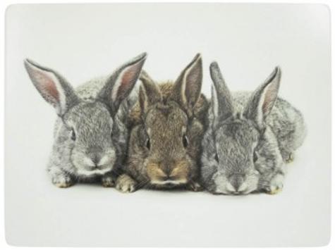 Set 4 placemats konijnen