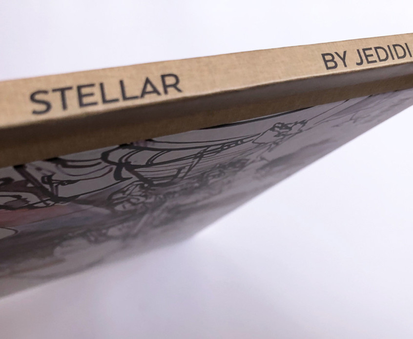 STELLAR space art book.