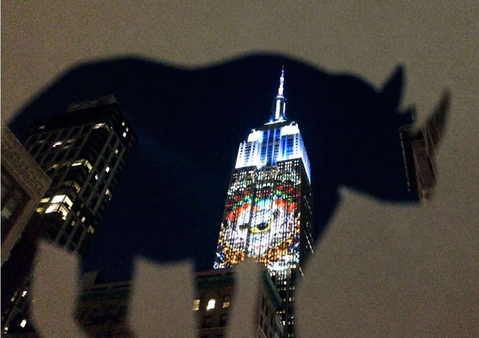 Javan Rhino projection.