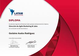 Diploma LATAM.png
