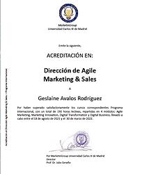 Diploma UC3M.png