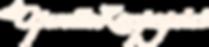 20202021_sæson_logo.png