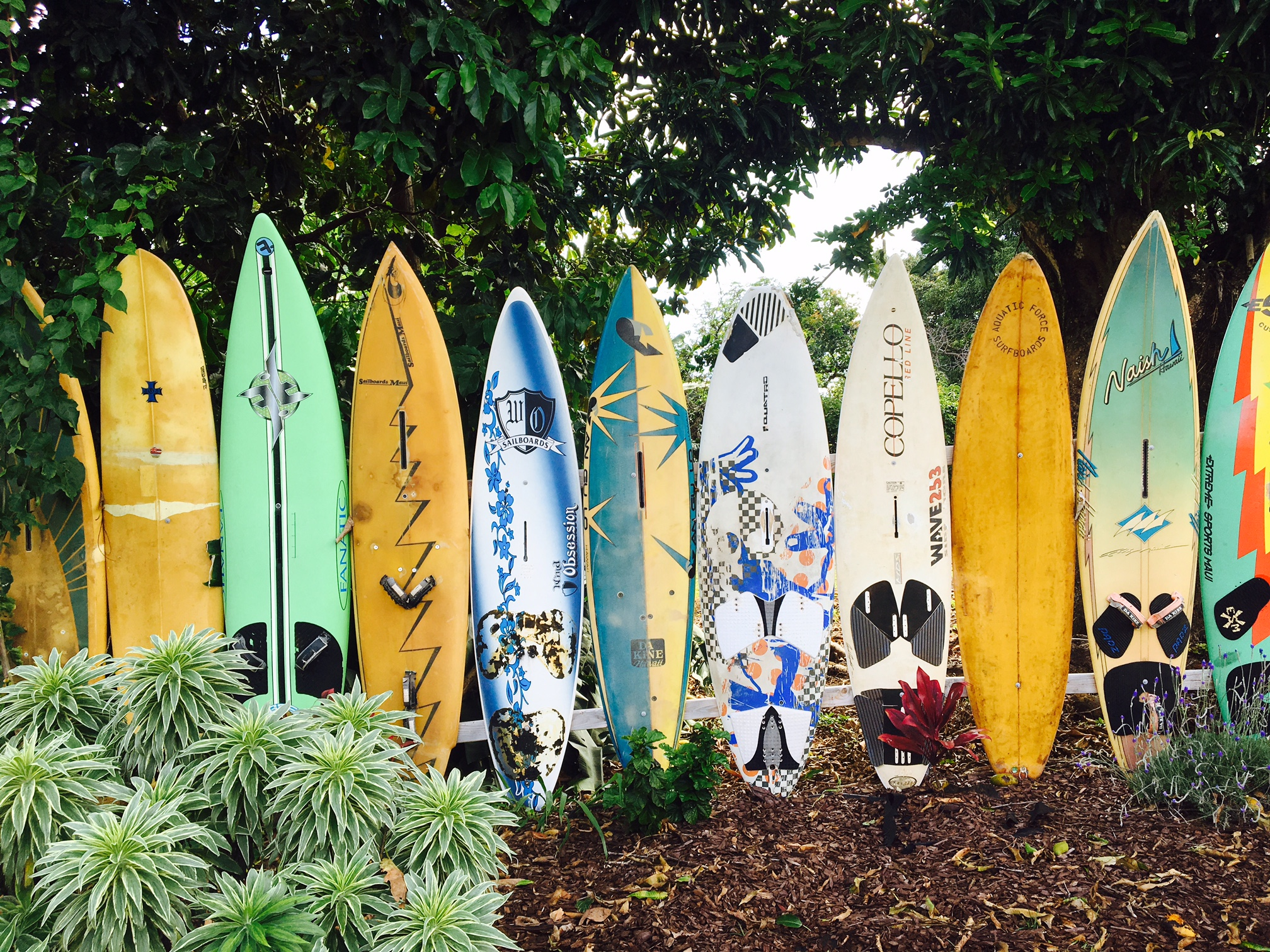 surf board fence on property