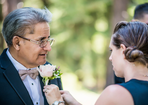 wedding planner with parent