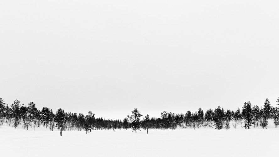 Saariselkä- Open fields