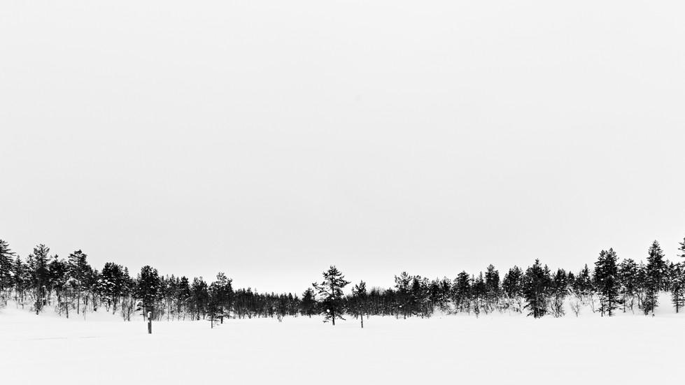 Saariselkä- Open fields